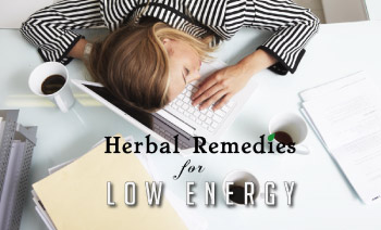 top herbal remedies for fatigue and low energy